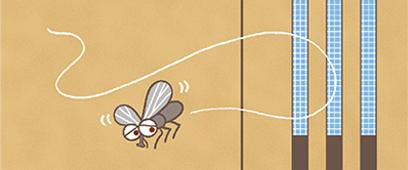 網戸付で虫もガード