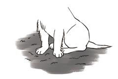 ペットの爪と床を守ります