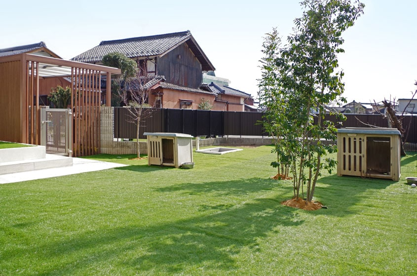 犬にも人にもうれしい、人工芝のドッグラン!の写真