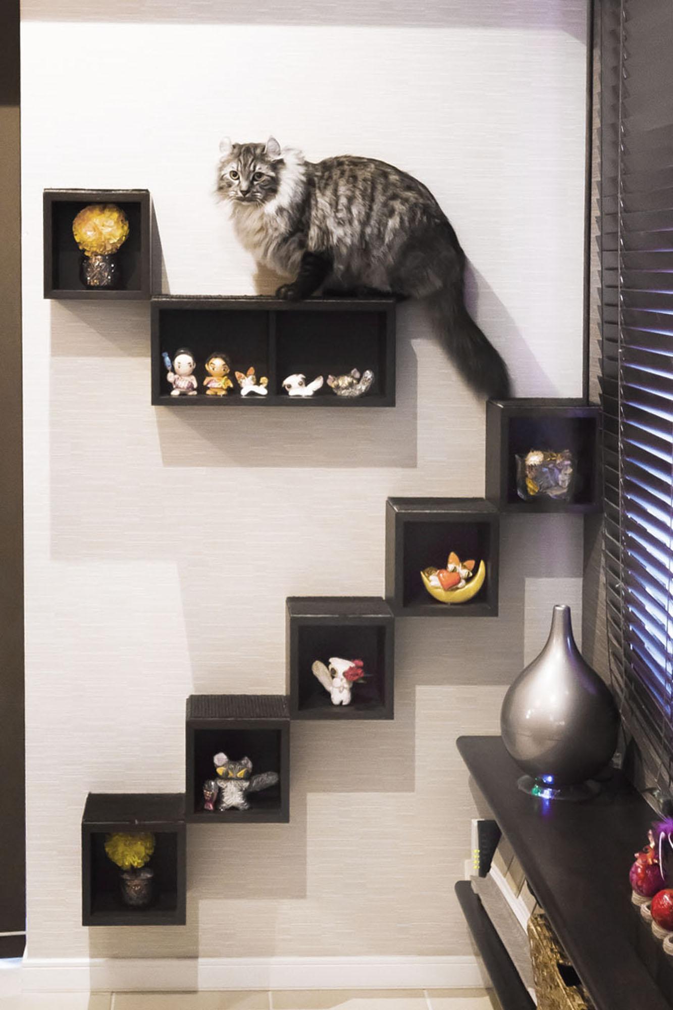ステップの飾り棚。の写真