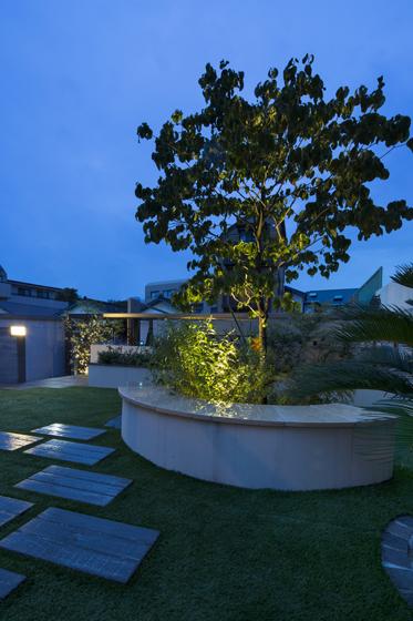 以前の庭から残っている木が、夜景の中心的な存在。の写真