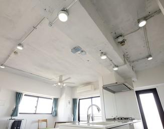 天井の配線をステンレス管に納め、デザインの一部に。の写真